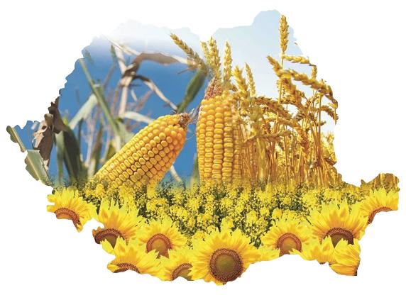 Agricultura românească, între speranță și avertismente