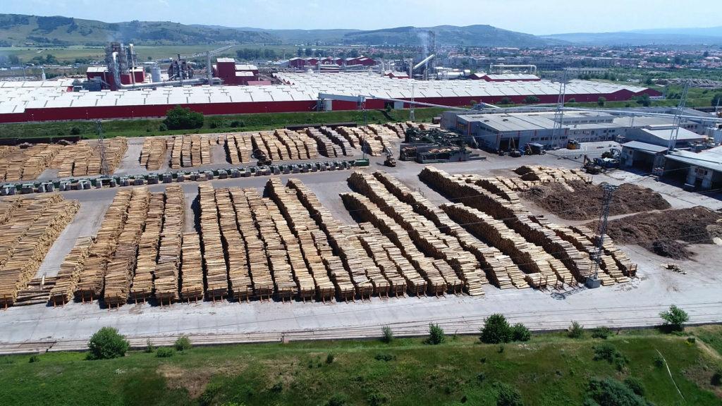 Iată că se poate: lemn românesc de aproape un milion de euro, confiscat!