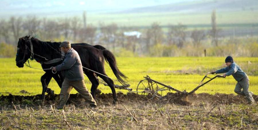 """Fermierii români mai stau o tură: și-au luat din nou """"pas"""" de la Bruxelles"""