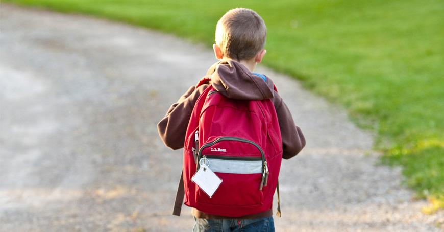 Declarație obligatorie pentru accesul la școală!